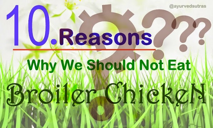 10 Reasons Why We Should Not Eat Broiler Chickens ?