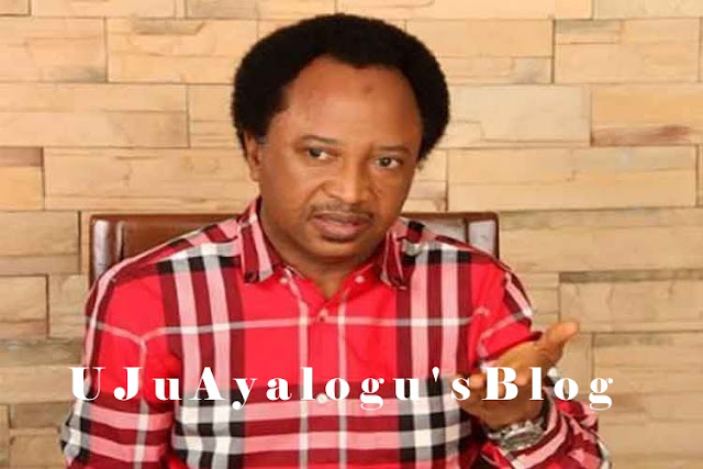 APC, A Reluctant Ruling Party, PDP, A Timid Opposition – Shehu Sanni