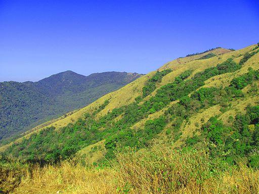 Brahmagiri Hills - Pakshi Pathalam - Near Thirunelli Temple  - Wayanad