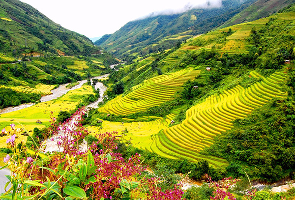Sapa - Top 10 places to visit in Vietnam