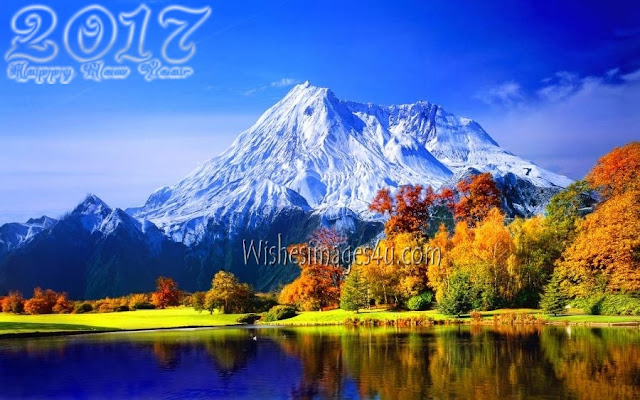 Happy New year 2017 Nature Photos In HD Download Free