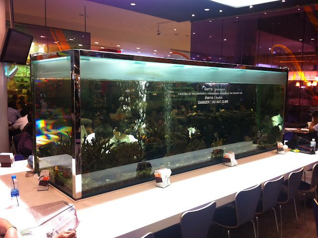 Nuestro acuario del día