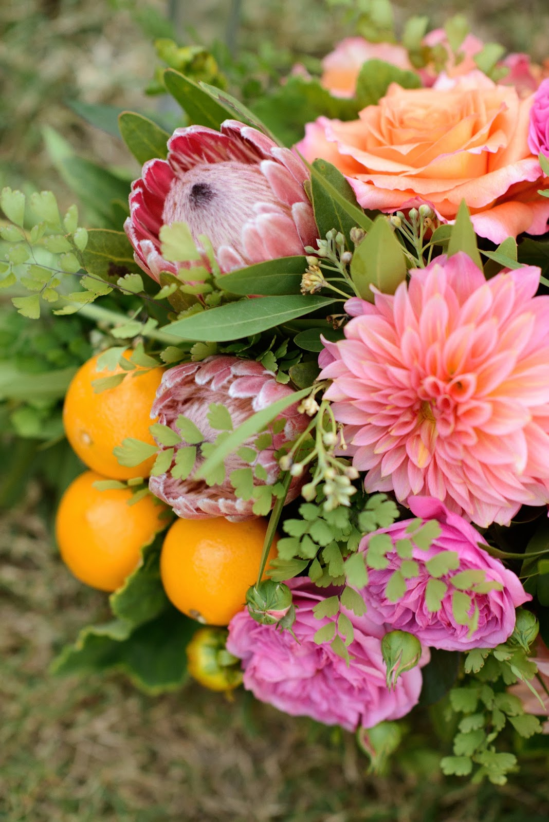 Palm springs flowers choice image flower decoration ideas palm springs flowers image collections flower decoration ideas flowers palm springs gallery flower decoration ideas palm mightylinksfo