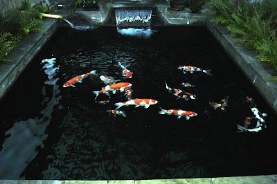 ไอเดียน้ำตกในบ่อปลาคราฟ