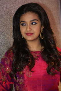Actress Keerthi Suresh Stills at Remo Success Meet  0006.JPG