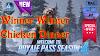 PUBG Mobile Season 4 Kam Gameplay | Winner Winner Chicken Dinner| learn2smart