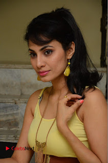 Actress Manisha Kelkar Latest Picture Gallery in Yellow Short Dress  0147