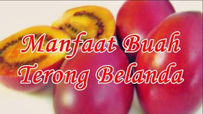 Manfaat Buah Terong Belanda untuk Kesehatan