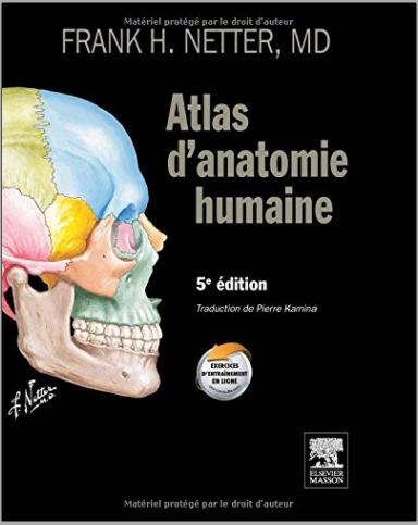 Livre : Atlas d'anatomie humaine - Frank Henry Netter, Saunders/E. Masson