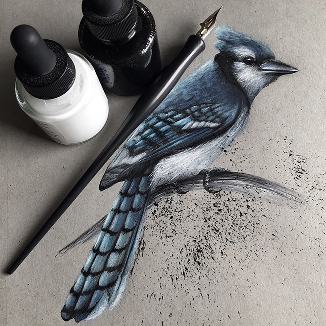 04-Blue-Jay-Jonathan-Martinez-Realistic-Pencil-Animal-Drawings-www-designstack-co