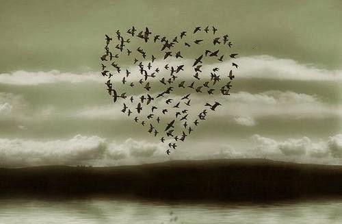 Imagens Frases Amor Tumblr: Amor Doce Melly: Imagens Tumblr