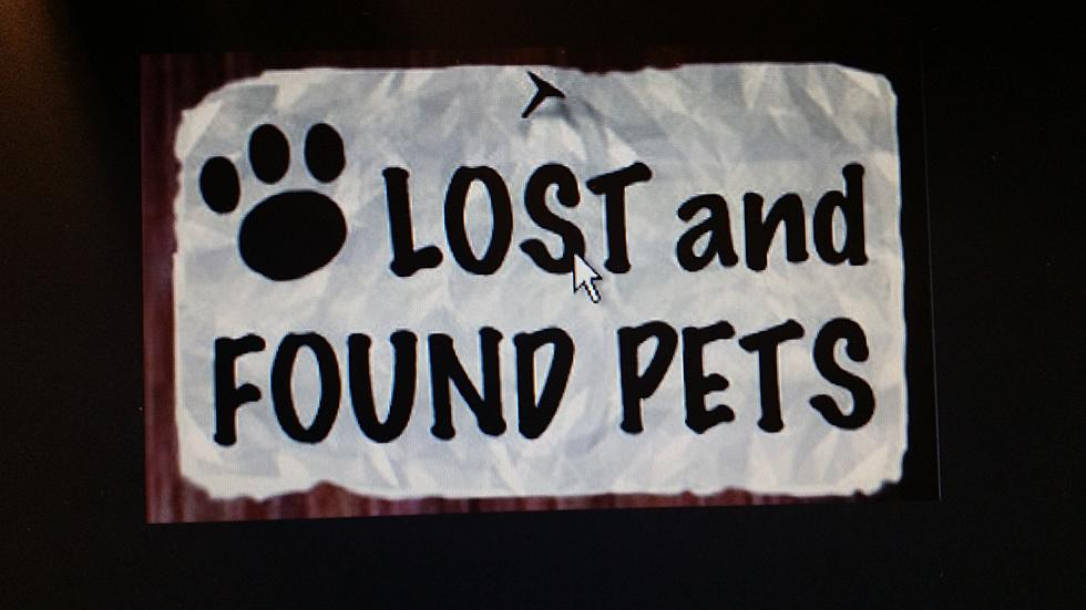 Lost or Found Pets