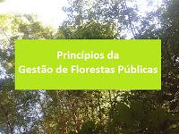Floresta Princípios da gestão de florestas públicas. Lei 11.284/06