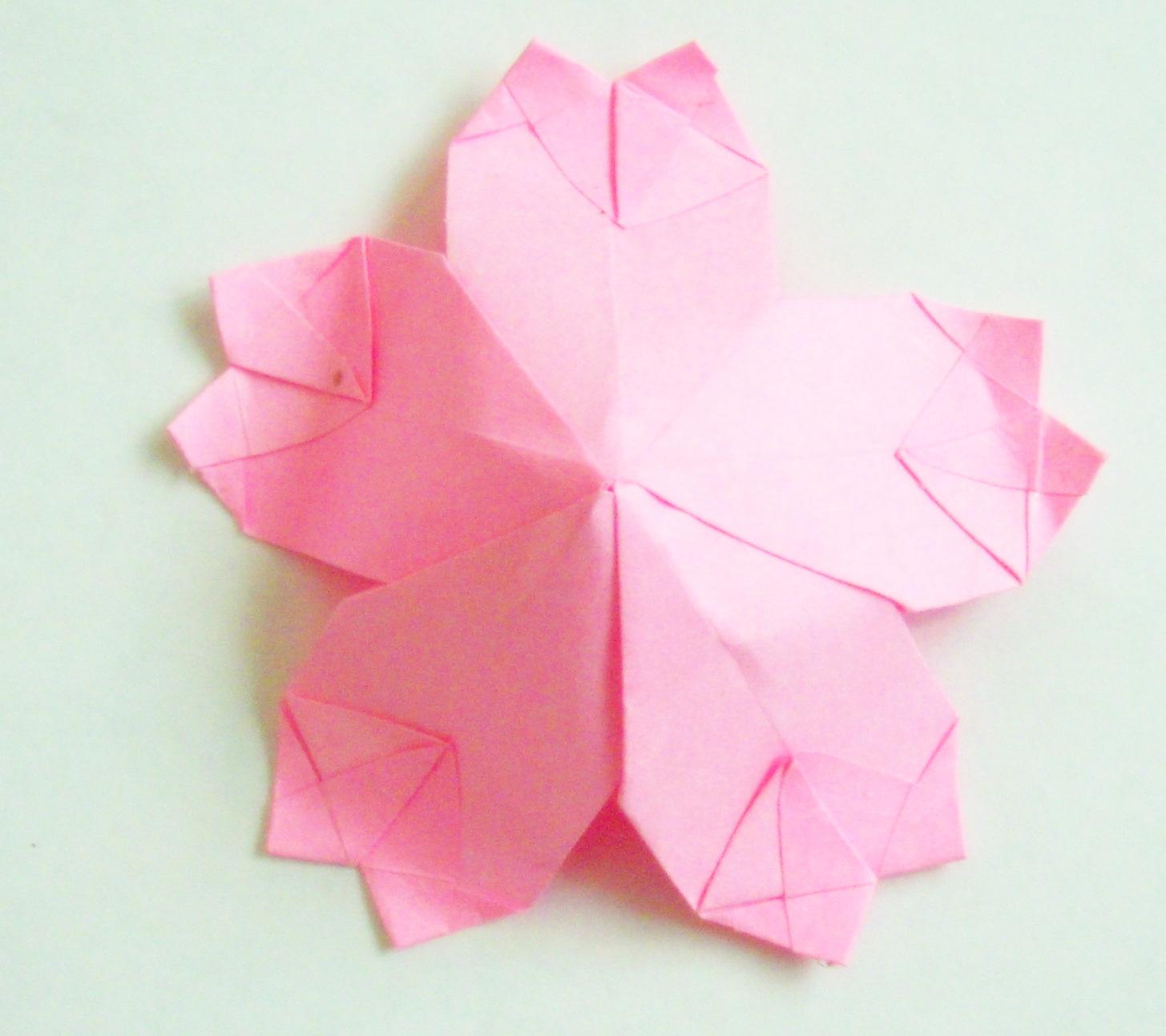 Origami: Origami Cherry Blossom - photo#5