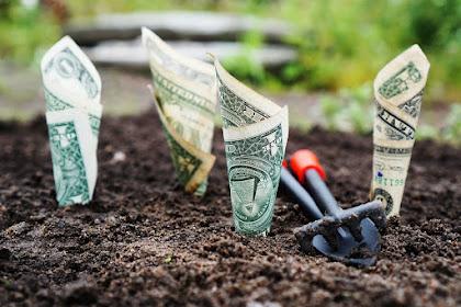 Cara investasi online aman bagi pemula dan tipsnya