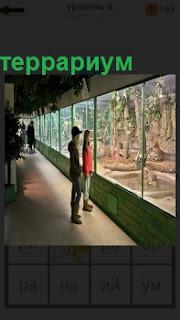 За большим стеклом в террариуме наблюдают посетители за поведением животных