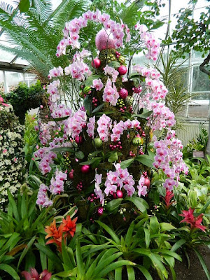Massed Phalaenopsis topiary at the 2018 Allan Gardens Conservatory Winter Flower Show by garden muses--not another Toronto gardening blog