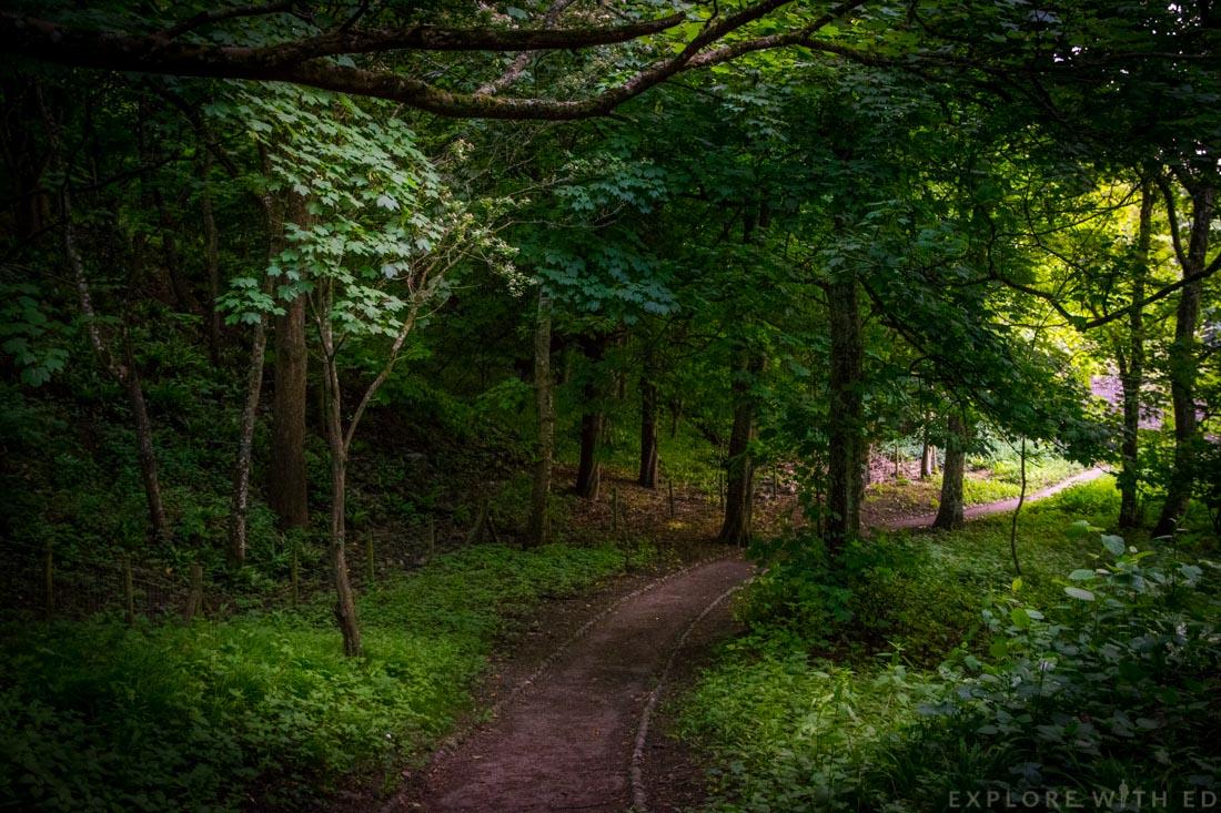 Dunraven woodland, Wales Coast Path, Glamorgan Heritage Coast