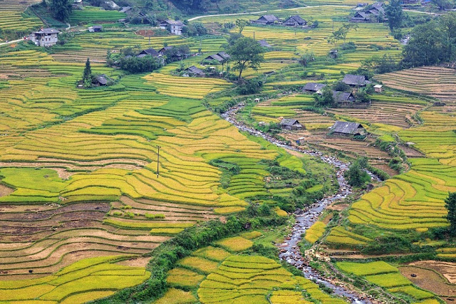 Top destinations in Vietnam for tourists in New Year's Day.