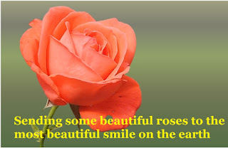 Rose Day Quotes Images