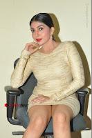 Actress Pooja Roshan Stills in Golden Short Dress at Box Movie Audio Launch  0073.JPG