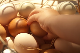 egg allergy symptoms and treatments