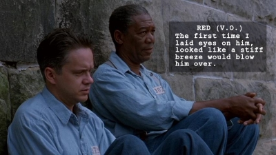 Tim Robbins and Morgan Freeman in THE SHAWSHANK REDEMPTION, narrated by Freeman's character, Red.