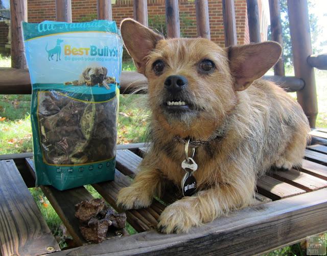 BestBullySticks.com venison dog chews