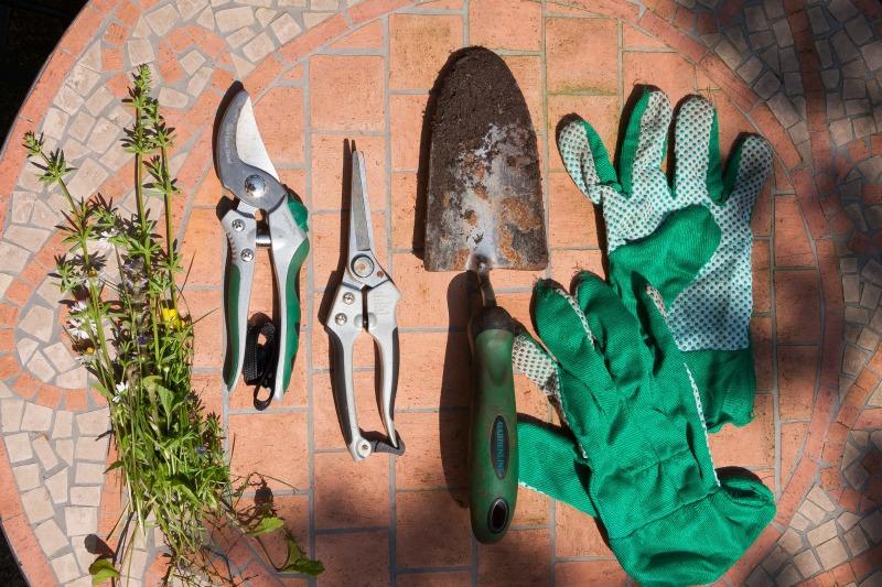 Las herramientas esenciales que no deben faltar en tu for Equipo de jardineria