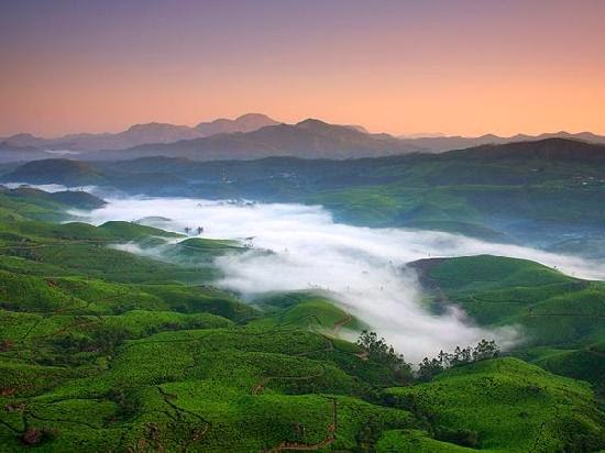 2 Nights 3 Days Kerala Tour - Book Munnar tour packages and honeymoon packages from Mumbai, Ahmedabad, Delhi, Pune, Hyderabad and Bangalore, munnar 2 nights 3 days package, 3 Days 2 Nights Kerala Honeymoon Packages , Kerala Honeymoon Packages | Book Honeymoon Packages,  , Honeymoon Package,2 Nights & 3 Days at Munnar, Kerala Honeymoon Packages - Munnar tour packages