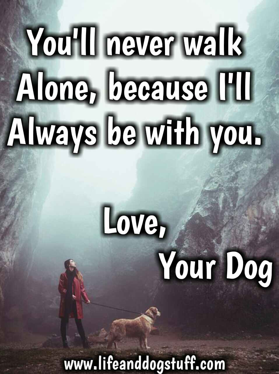 35 of the Most Beautiful Dog Quotes and Sayings