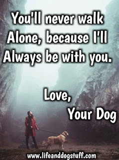 dog quotes love and loyalty, you'll never walk alone.