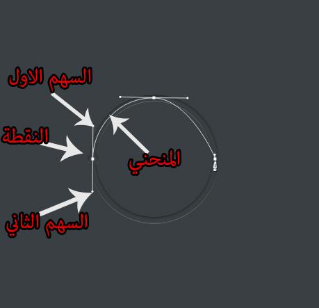 طريقة رسم دائرة بلبن تول