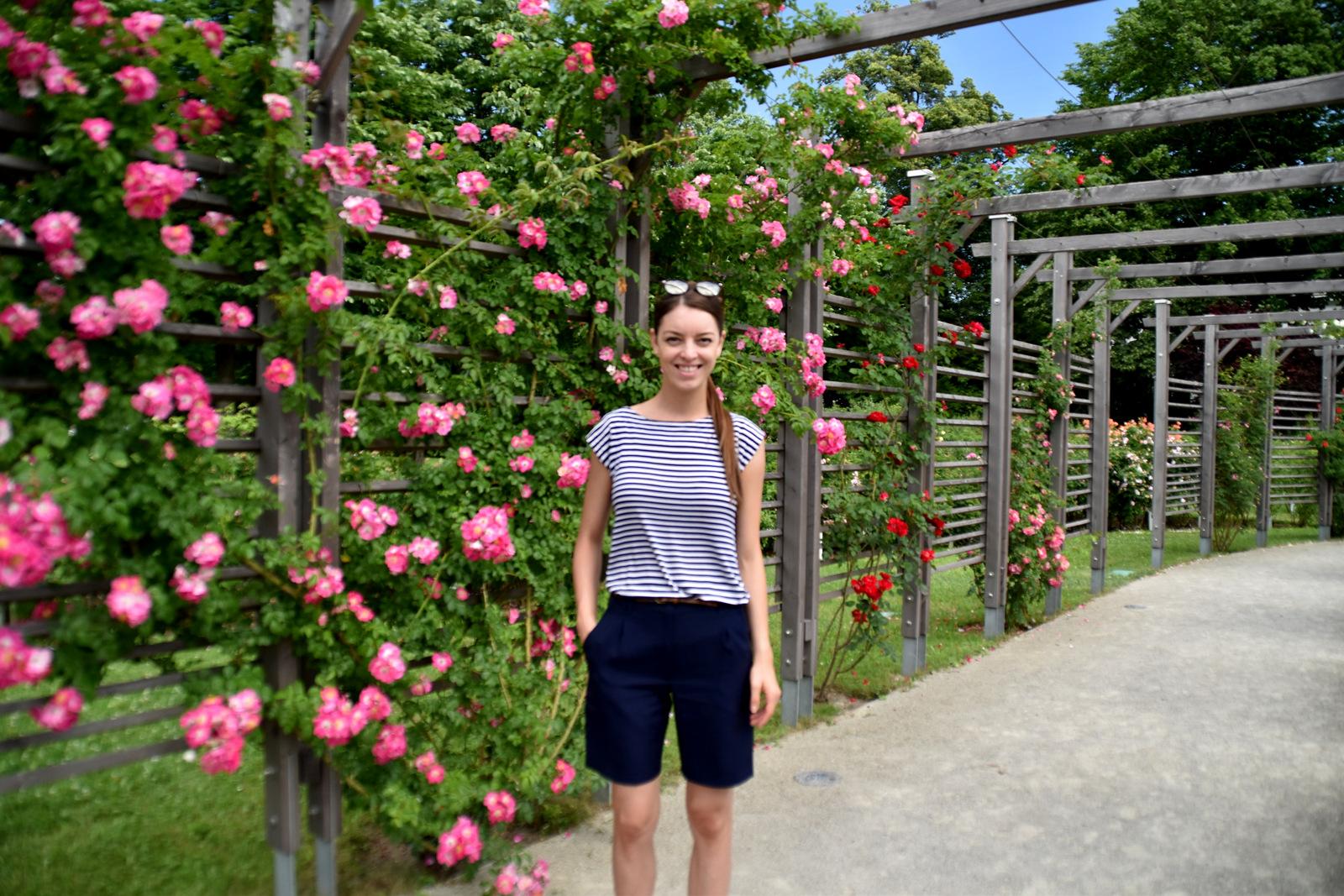 výstava ruží v Baden, Rosarium, Doblhoffparku  // Badener Rosentage, Österreich