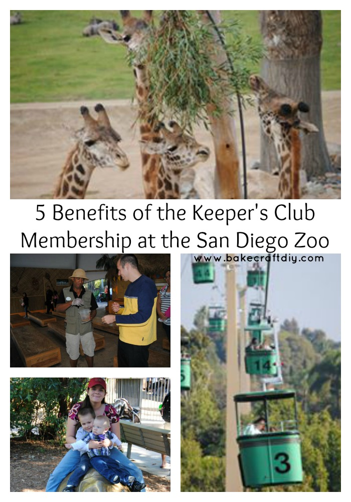 zoo benefits Here is a sampling of benefits zoo members enjoy special privileges designed  to enhance your zoo visits are available at different contribution levels.