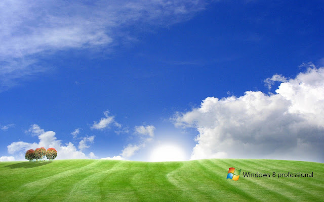 Landschap Windows 8 wallpaper met gras blauwe lucht wolken en Windows 8 tekst
