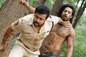 singam 3 movie stills gallery-thumbnail-39