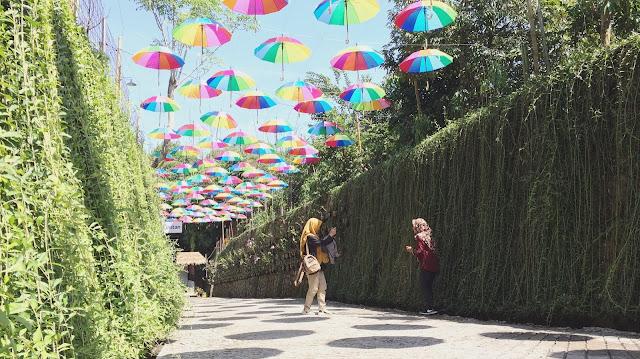 Salah satu spot foto di Taman Botani Sukorambi yang instagrammable.