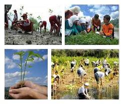 Interaksi Manusia Dengan Lingkungan Alam Sosial Budaya Dan Ekonomi Materi Belajar
