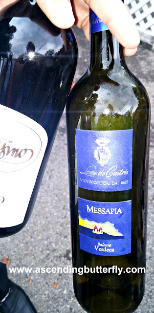 Leone de Castris Verdeca Bianco Messapia 2009, Red Wine