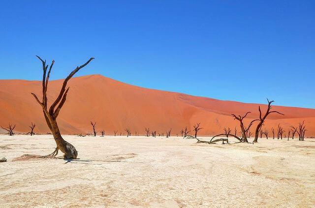 Deadvlei Namibia - foto Instagram @mp_travelphotography
