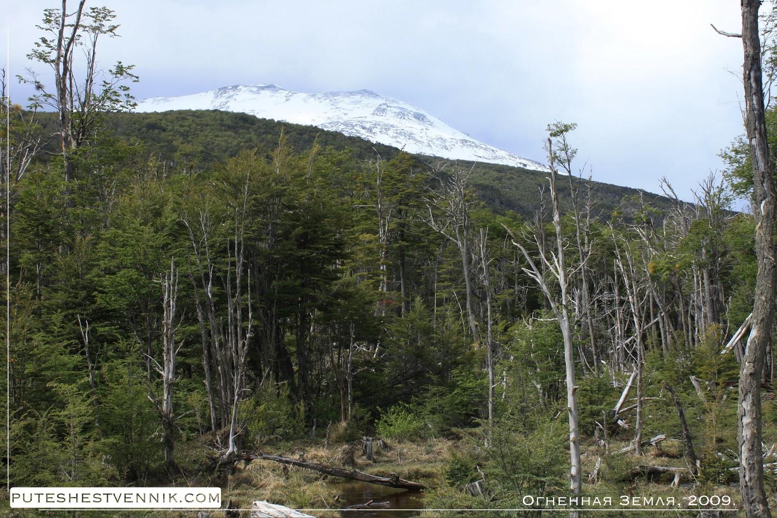 Леса и горы Огненной Земли