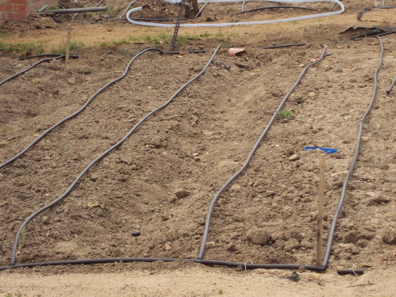 En torno al huerto nuevo montaje del riego por goteo - Sistema riego goteo ...