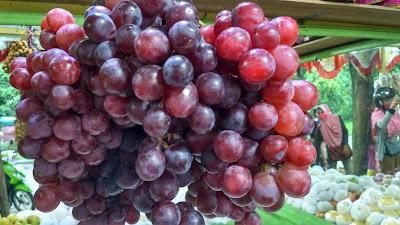 buah-buahan buah-buahan yang diperoleh dari alam dalam bentuk segar tanpa proses pemasakan adalah buah-buahan yang mengandung vitamin c buah-buahan untuk diet buah-buahan penurun kolesterol buah-buahan segar buah-buahan dan sayuran banyak mengandung buah-buahan dalam bahasa inggris buah-buahan yang mengandung vitamin d buah-buahan yang mengandung vitamin a buah-buahan yang mengandung asam folat buah-buahan yang mengandung serat buah-buahan terbesar di dunia buah-buahan dataran tinggi buah-buahan untuk penambah darah buah-buahan untuk penderita diabetes buah-buahan untuk obat ginjal buah-buahan yang menurunkan kolesterol buah-buahan yang berwarna kuning dan orange mengandung buah-buahan luar negeri buah-buahan yang mengandung vitamin e buah-buahan aneh buah-buahan asam urat buah-buahan adalah buah-buahan apel buah-buahan animasi buah-buahan asli kalimantan buah-buahan anti penuaan dini buah-buahan apa yang bisa menambah darah buah-buahan apa saja yang tidak boleh dikonsumsi ibu hamil buah-buahan asli indonesia buah-buahan anti kolesterol buah-buahan artificial buah-buahan anti kanker buah-buahan agar cepat hamil buah-buahan apa saja yang baik untuk ibu menyusui buah-buahan asam buah buahan aneh tapi nyata buah buahan antioksidan buah buahan asli indonesia yang hampir punah buah buahan animasi bergerak