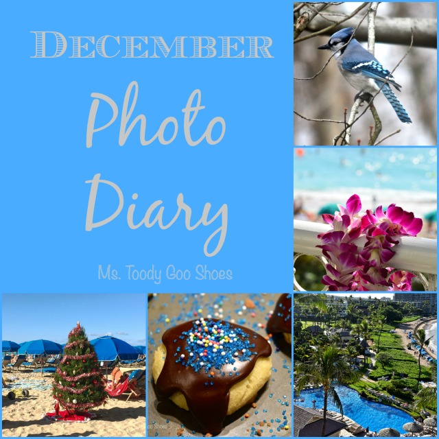 December Photo Diary - Ms. Toody Goo Shoes