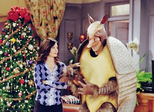 christmas armadillo friends
