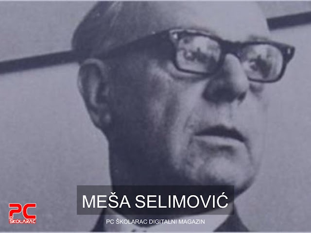 MEŠA SELIMOVIĆ, TIŠINA