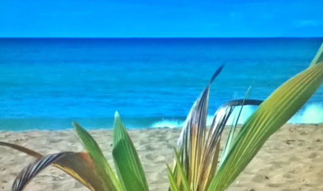Travel 2 The Caribbean Blog Jetblue All Inclusive