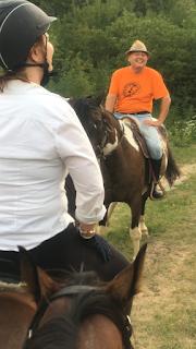 Kroatia, Horsexplore, Miso Mraovic, laukkahevonen