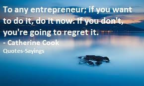 entrepreneurs quotes